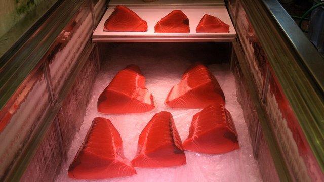 Schon bald Schluss mit Sushi?