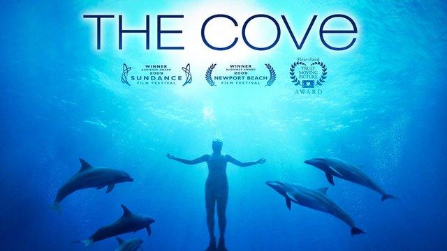 Kontroverse um eine Delfinjagd-Doku