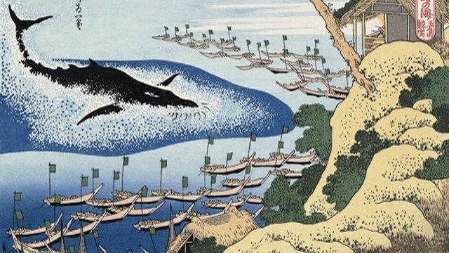 Walfang aus japanischer Sicht