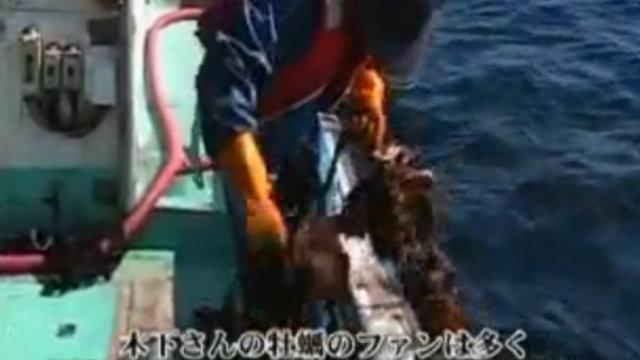 Die Fischerei geht ins Internet