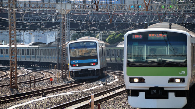 Selbstmörder bringen Tokios Züge zum Stillstand