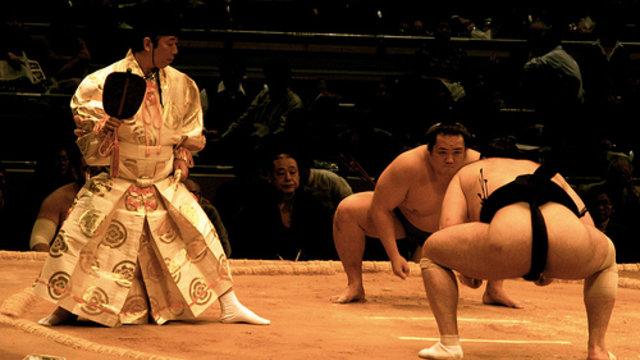 Sumo guckt in die Röhre