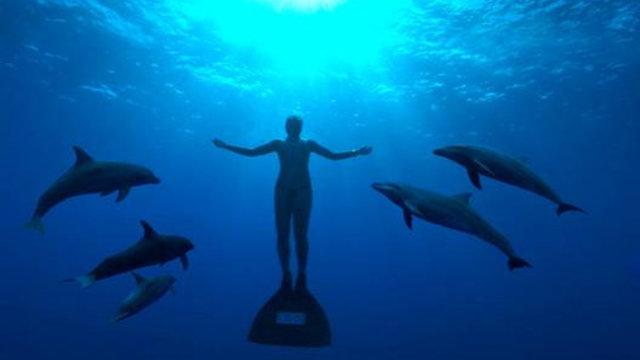 «The Cove» wird zum Kinoerfolg