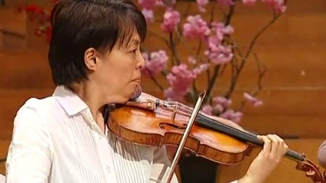 Die beschlagnahmte Geige