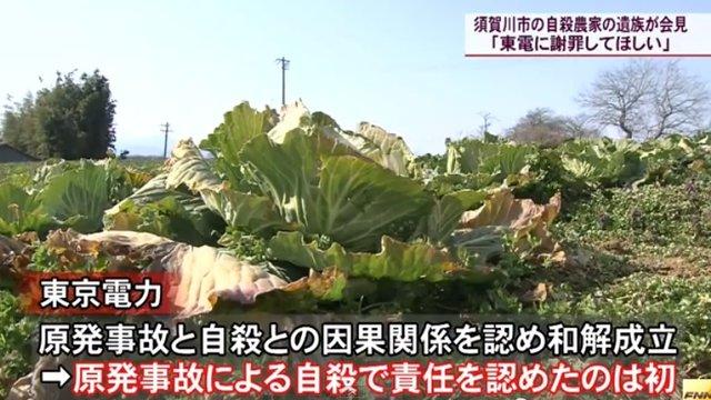 Selbstmord nach Fukushima
