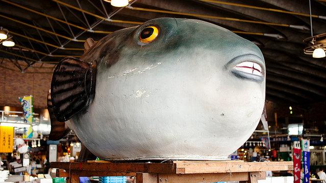 Die Hauptstadt des Kugelfisches
