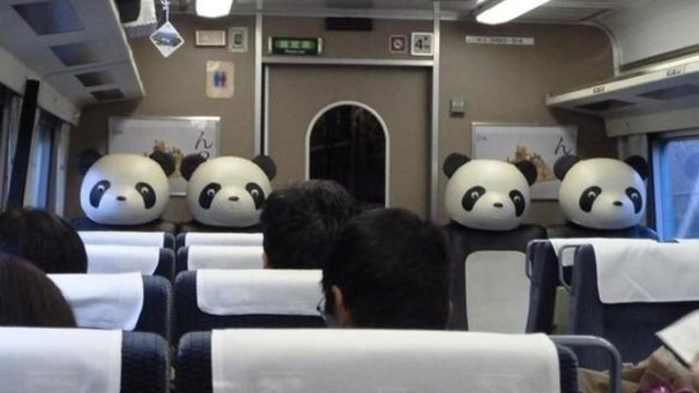 Beängstigende Pandas
