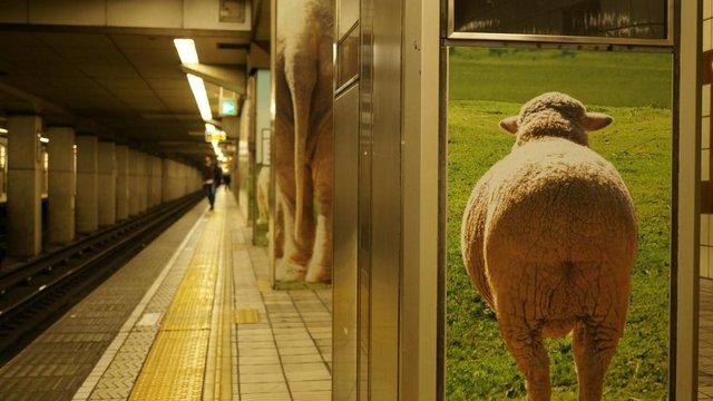 Der Zoo im Untergrund