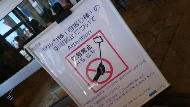 Das Selfie-Stick-Verbot