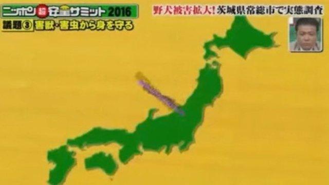 Die falsche Japan-Karte