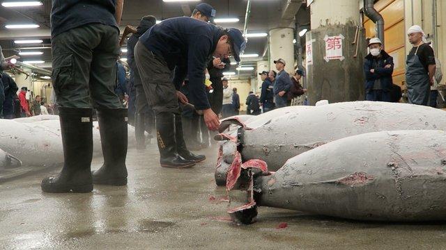 Tsukijis letzte Neujahrsauktion