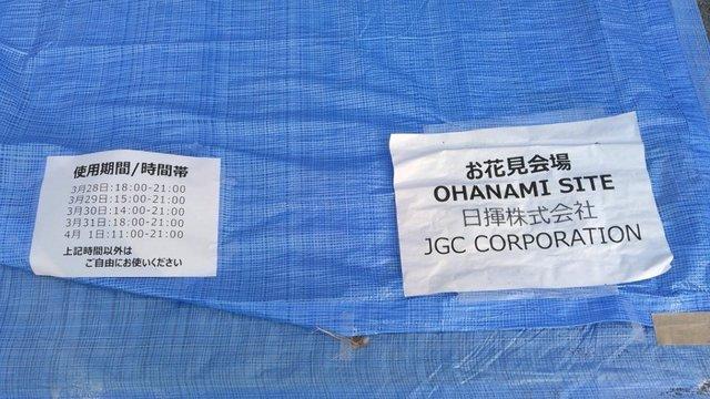 Begehrte Hanami-Plätze