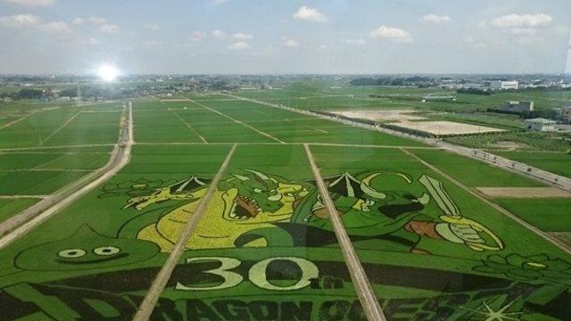 Das grösste Reisfeld-Gemälde
