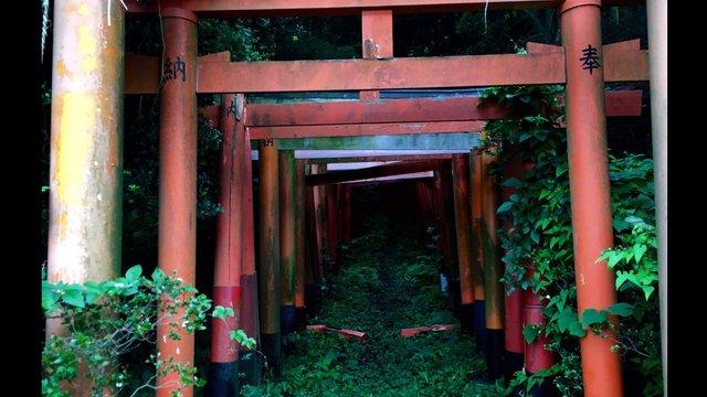Der mysteriöse Inari-Schrein