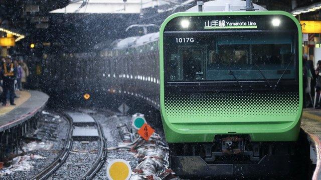 Schnee im Tokioter Herbst