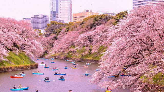 Tokios Top-10-Sehenswürdigkeiten