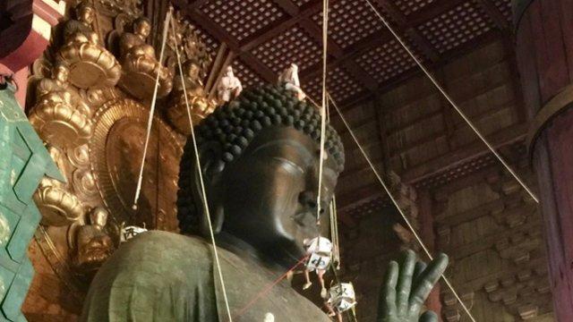 Den Grossen Buddha reinigen
