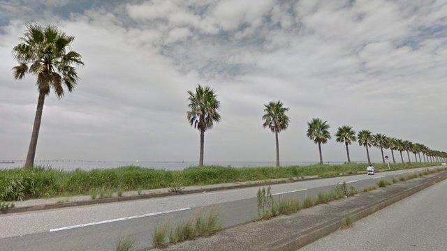 Die Palmen-Strasse bei Tokio