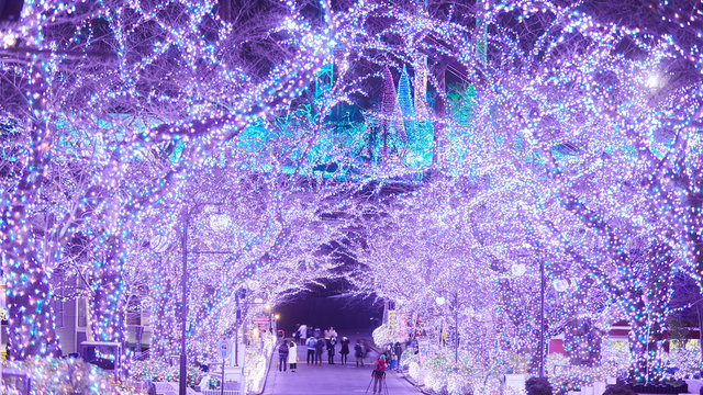 Tokio im winterlichen Lichtzauber