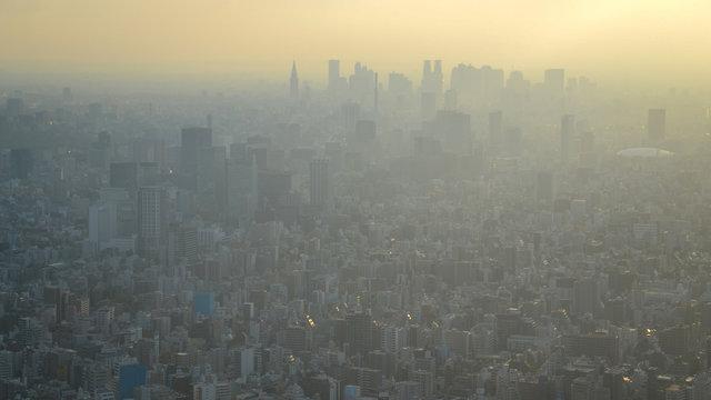 Haru-ichiban: Der erste Frühlingswind
