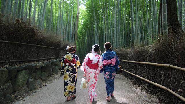 Im Kimono Japan entdecken