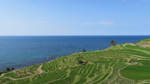 Die Reisterrassen von Shiroyone