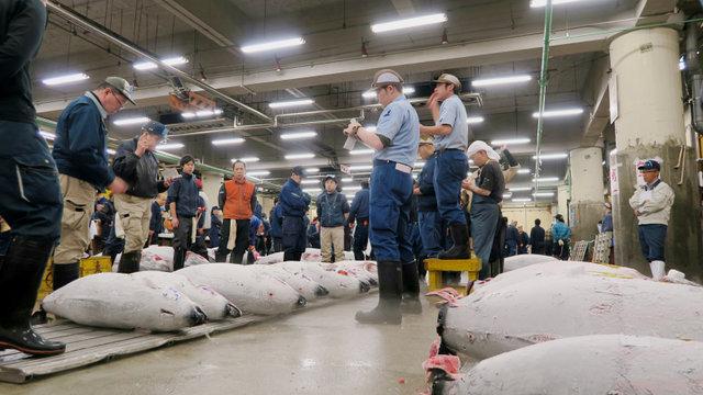 Besucheransturm im Fischmarkt von Tsukiji