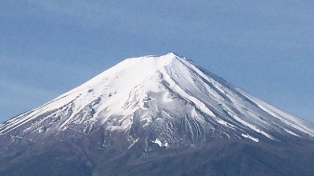 Der grosse Vogel am Fuji