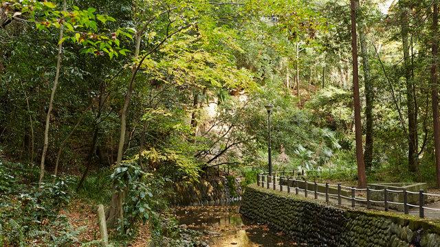 Die grüne Seite von Tokio