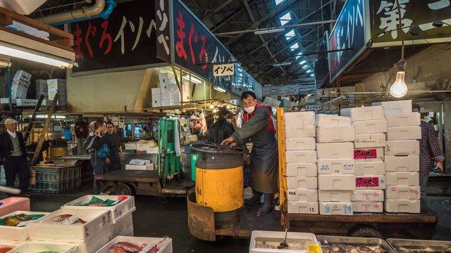 Tsukiji: Der gigantische Umzug des Fischmarktes