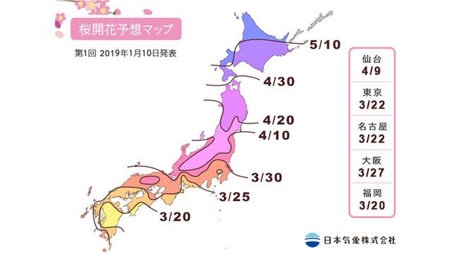 Die erste Kirschblüten-Prognose für 2019