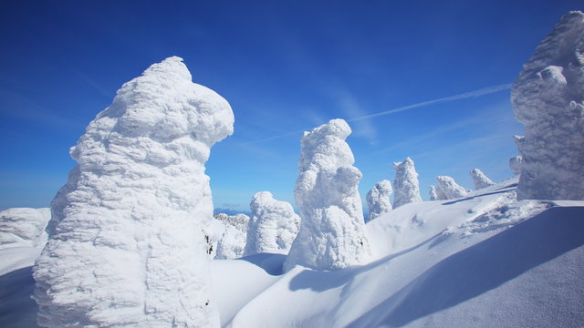 Die «Schnee-Monster» von Zaō-Onsen