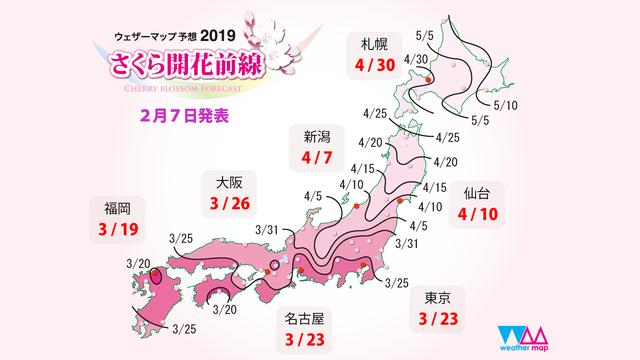 Die zweite Kirschblüten-Prognose
