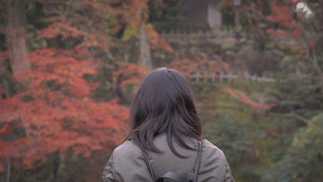 Die besten Reisemonate für Japan