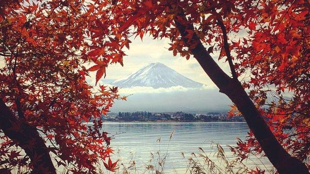 Ein Feiertag für den Herbstbeginn