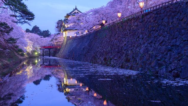 Hirosaki: Die Stadt der späten Kirschblüten