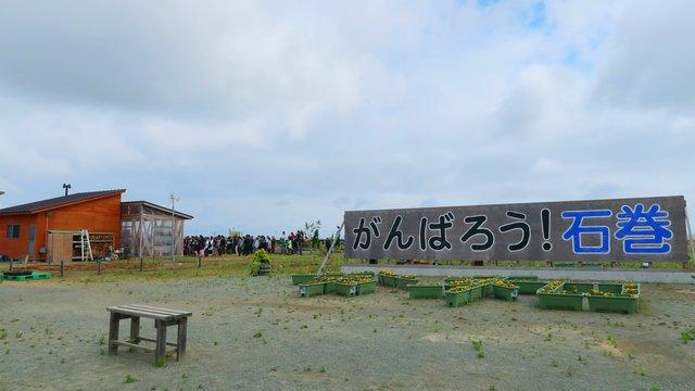 9 Jahre nach dem Tsunami: In der Stadt, die nie aufgibt