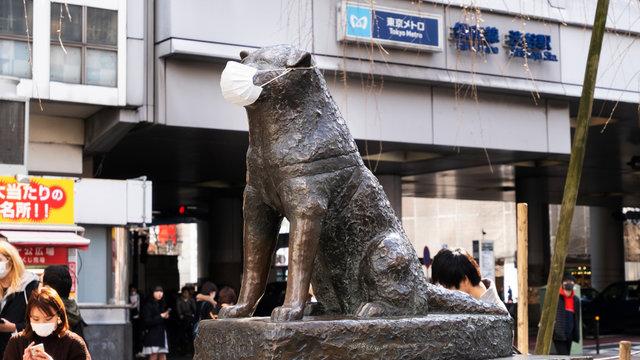 Tokio im sanften Lockdown