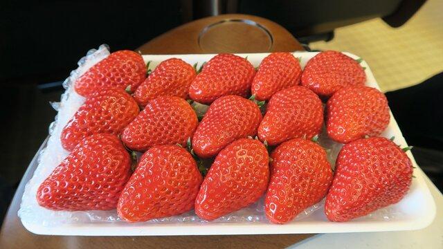 Japans perfekte Erdbeeren
