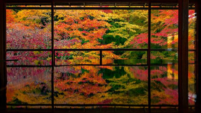 Japan läutet den Herbstbeginn ein