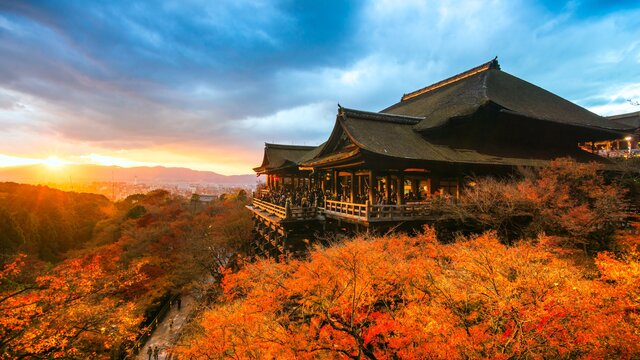 Eine Japan-Reise im Jahr 2021?