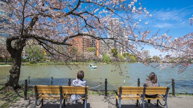 Ein Feiertag für den Frühlingsauftakt