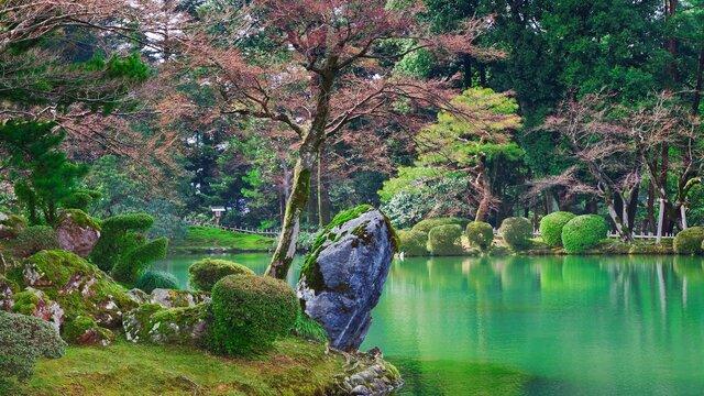 Ein Feiertag für die Natur