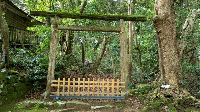 Der Schrein mit dem mystischen Wald
