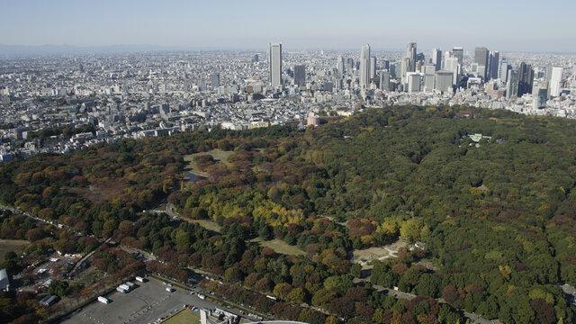 Die reiche Geschichte des Yoyogi-Parks