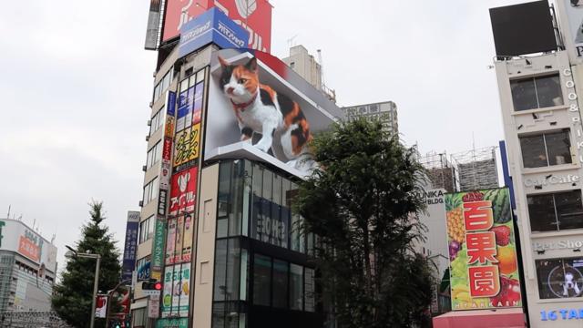 Tokios riesige 3D-Katze