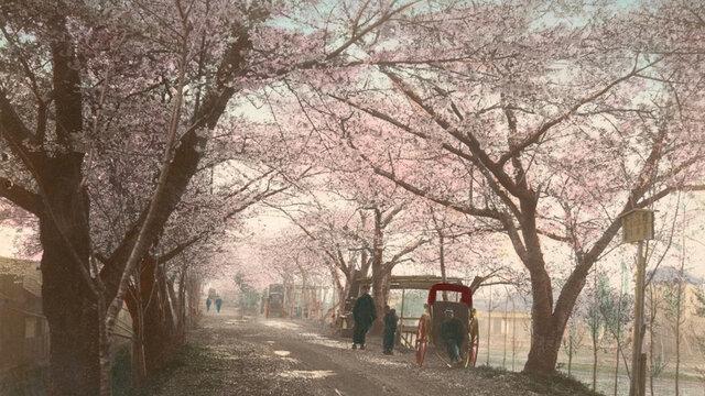 Japan um 1880